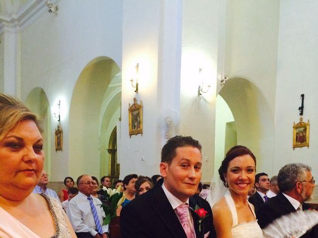 La boda de Sergio y Pilar en Miguel Esteban, Toledo 13