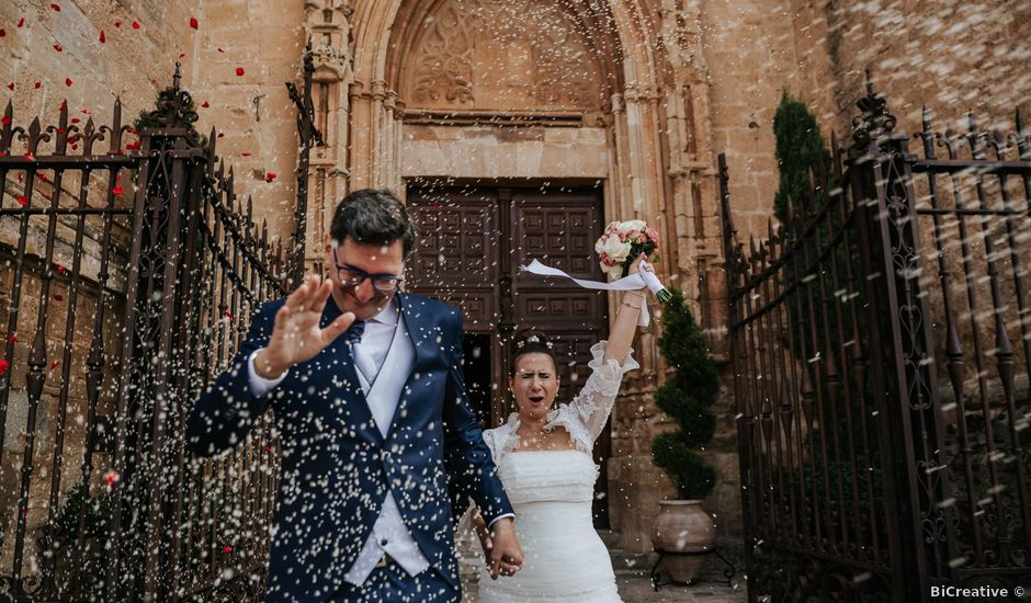 La boda de Luis Felipe y Eva en Tomelloso, Ciudad Real