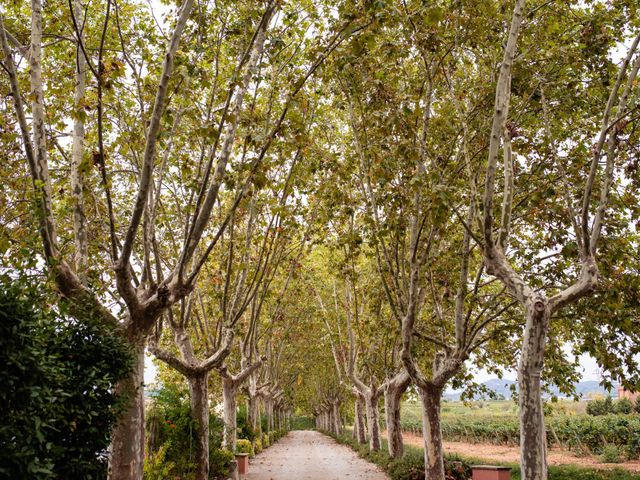 La boda de Carla y Alan en Sant Cugat Sesgarrigues, Barcelona 49