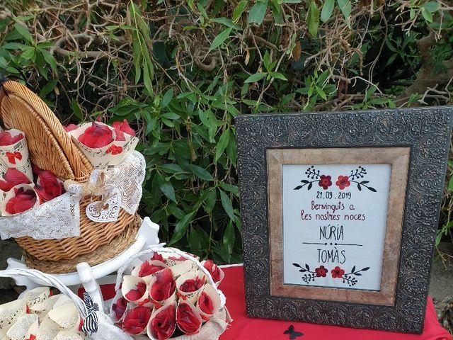 La boda de Tomy y Nuri en Muro, Islas Baleares 7