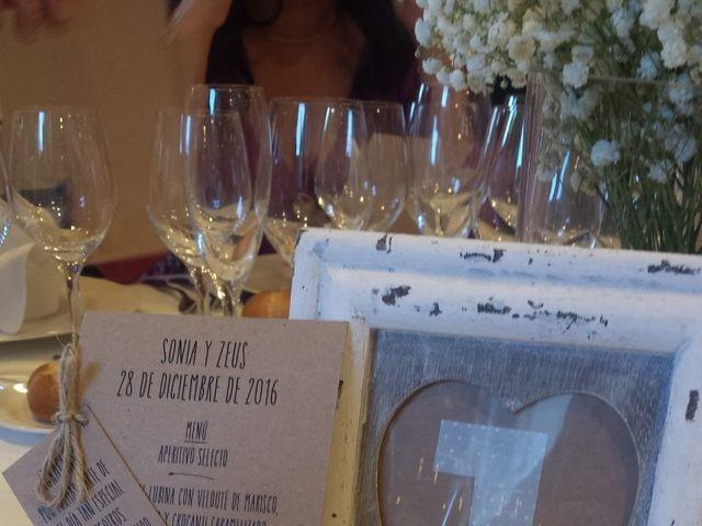 La boda de Zeus y Sonia en Monistrol De Montserrat, Barcelona 12