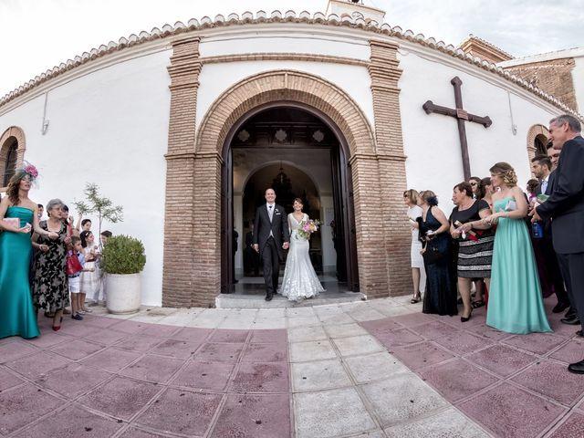 La boda de Moisés y Amparo en Granada, Granada 48