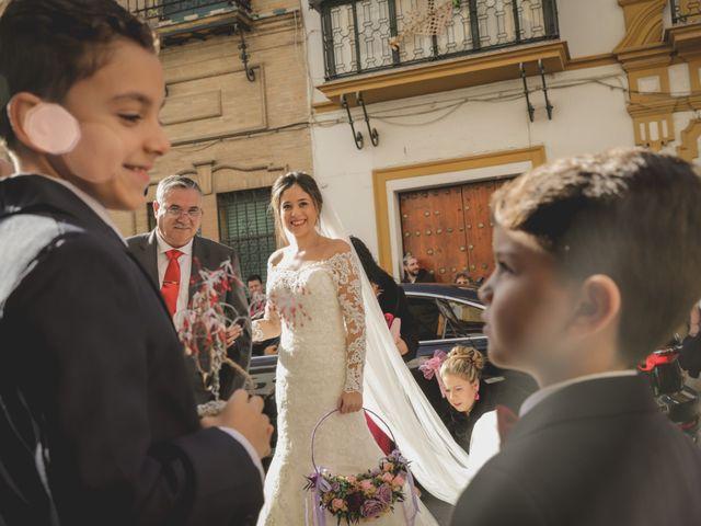 La boda de Luis y Ana en Alcala Del Rio, Sevilla 15