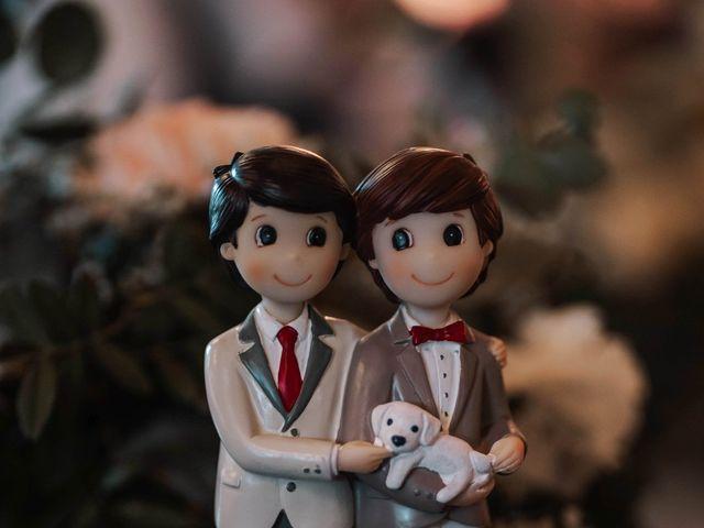 La boda de Raul y Daniel en Valencia, Valencia 11