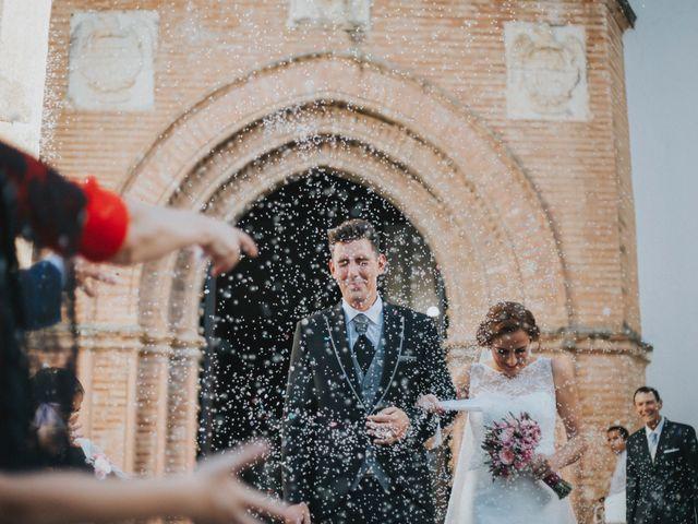 La boda de Jose Antonio y Rocio en Lora Del Rio, Sevilla 33