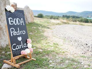 La boda de Carla y Pedro 1
