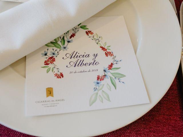 La boda de Alberto y Alicia en Toledo, Toledo 88