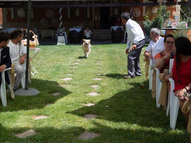 La boda de Javi y Ana en Aranjuez, Madrid 29