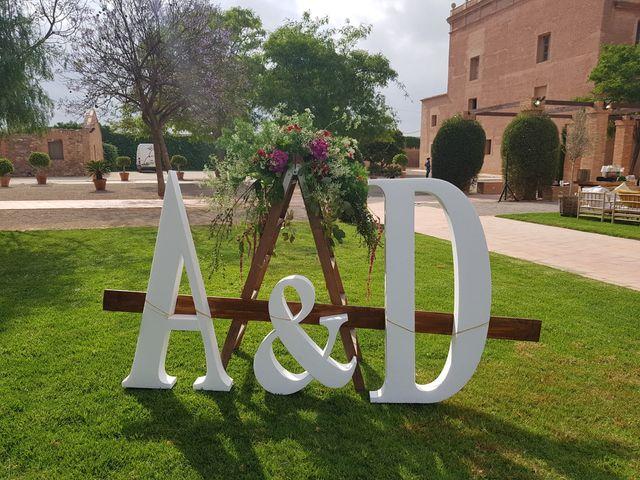 La boda de David y Amparo  en El Puig, Valencia 5