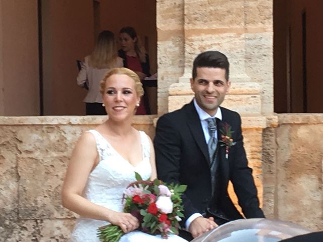 La boda de David y Amparo  en El Puig, Valencia 11