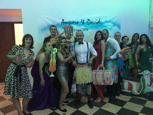 La boda de David y Amparo  en El Puig, Valencia 14