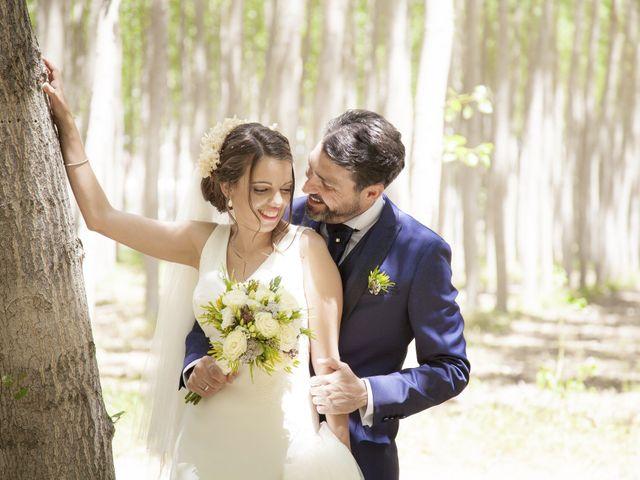 La boda de Javier y Cristina en Purullena, Granada 1