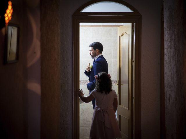 La boda de Javier y Cristina en Purullena, Granada 2