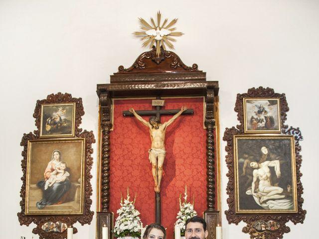 La boda de Javier y Cristina en Purullena, Granada 9