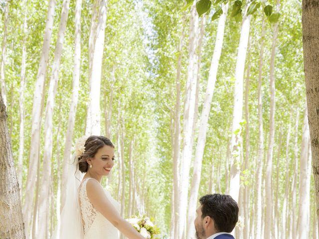 La boda de Javier y Cristina en Purullena, Granada 12