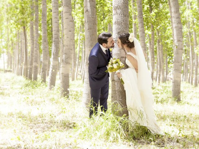 La boda de Javier y Cristina en Purullena, Granada 13