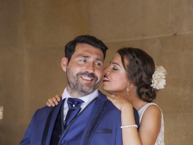 La boda de Javier y Cristina en Purullena, Granada 29