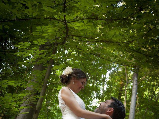 La boda de Javier y Cristina en Purullena, Granada 35
