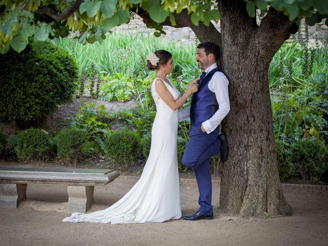 La boda de Javier y Cristina en Purullena, Granada 40