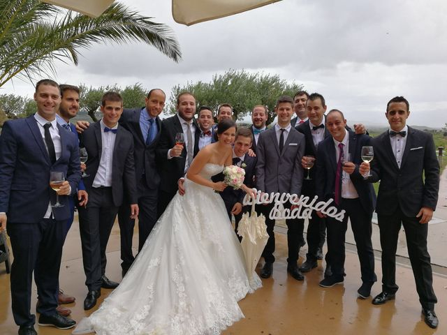 La boda de Fernando  y Lidia en Laguardia, Álava 4