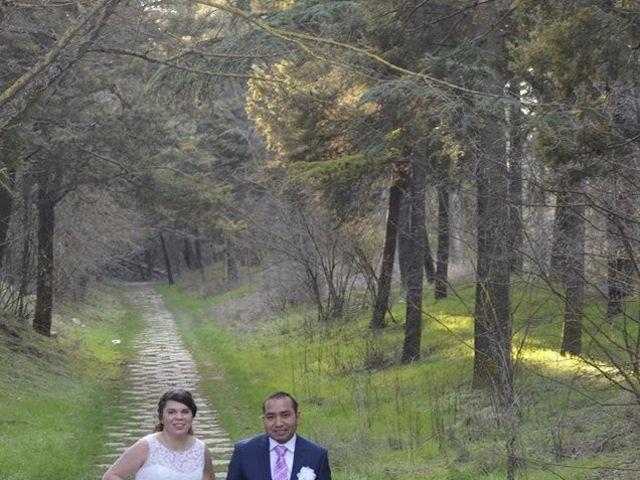 La boda de Berquin y Cristina  en Burgos, Burgos 1