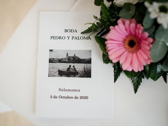La boda de Pedro y Paloma en Salamanca, Salamanca 21