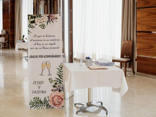 La boda de Pedro y Paloma en Salamanca, Salamanca 24