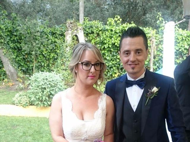 La boda de David y Silvia en Montornes Del Valles, Barcelona 1