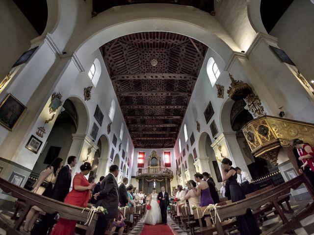 La boda de Enrique y Cecilia en Granada, Granada 23