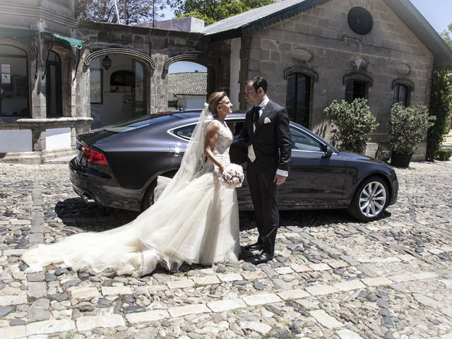 La boda de Juan Lucas y Patricia en Jerez De La Frontera, Cádiz 31