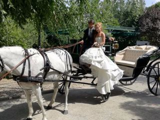 La boda de Alexandra del Sol y Fernando