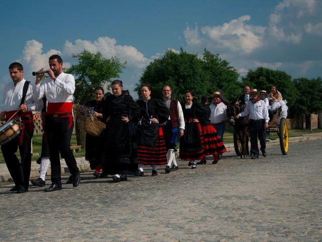 La boda de David y Rubí en San Ildefonso O La Granja, Segovia 45