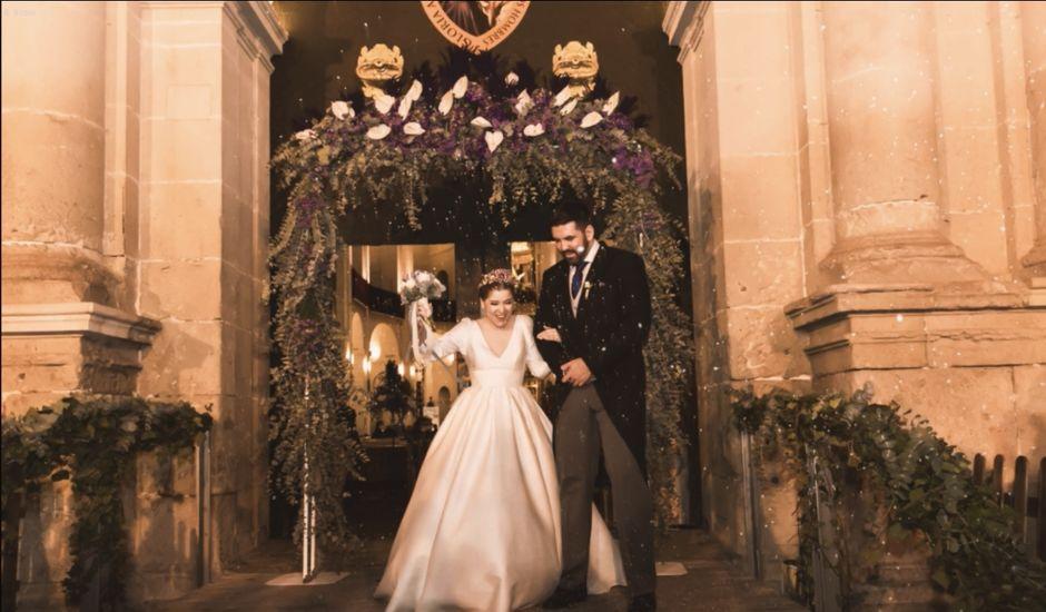 La boda de Álvaro y Lucía en Alacant/alicante, Alicante