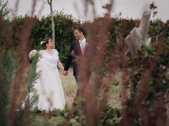 La boda de Javier y Laura en Cubas De La Sagra, Madrid 9
