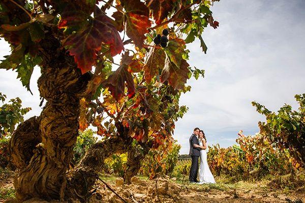 La boda de Javier y Alexandra en Logroño, La Rioja 48