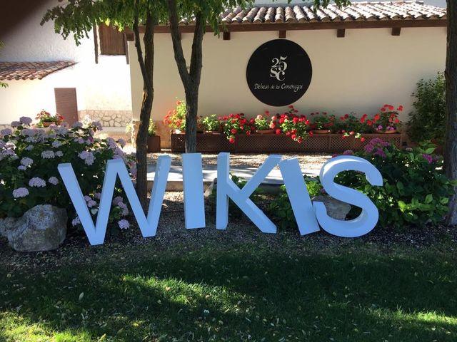 La boda de Kike y Isabel en Pesquera De Duero, Valladolid 26