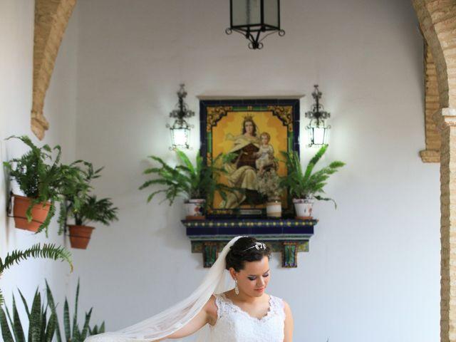 La boda de Vicente y Lorena en Trigueros, Huelva 6