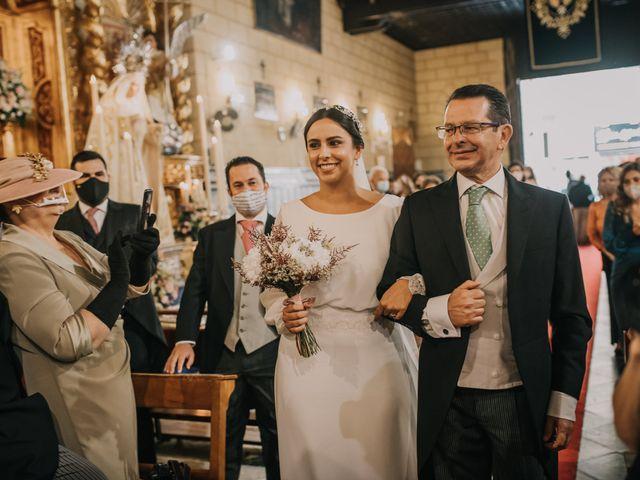 La boda de Inmaculada y Andrés en Alcala De Guadaira, Sevilla 35