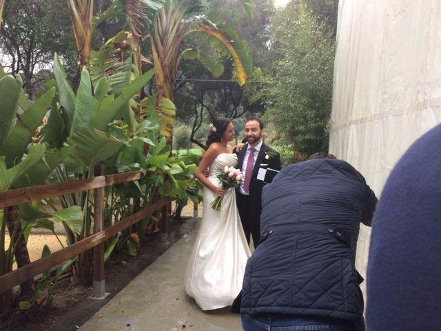 La boda de Hugo y Alina en Los Barrios, Cádiz 13