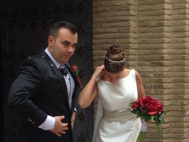 La boda de Sergio y Helena en Pedrola, Zaragoza 3