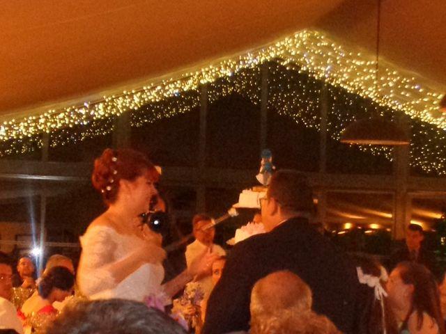 La boda de Carlos y Anabel en Ribarroja del Turia, Valencia 13