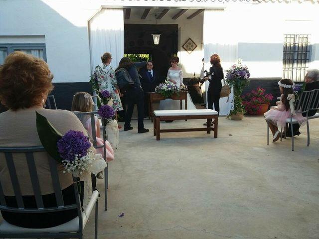 La boda de Carlos y Anabel en Ribarroja del Turia, Valencia 14