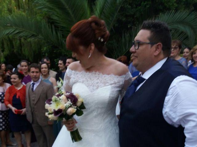 La boda de Carlos y Anabel en Ribarroja del Turia, Valencia 22