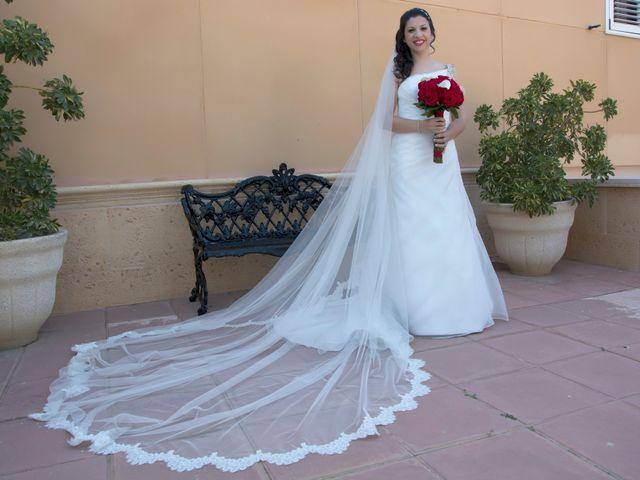 La boda de Antonio y Rocio en Rioja, Almería 16