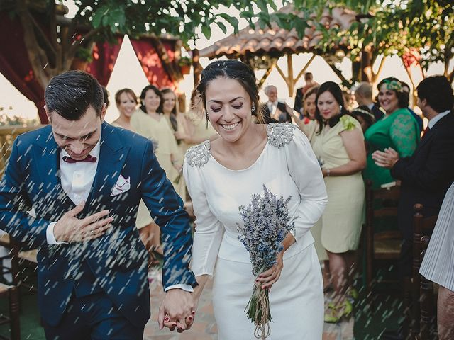 La boda de Jesús y Celia en Villarrubia De Los Ojos, Ciudad Real 41
