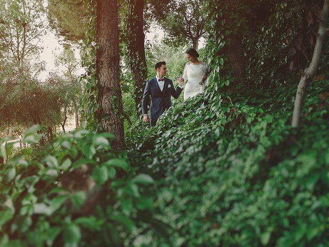 La boda de Jesús y Celia en Villarrubia De Los Ojos, Ciudad Real 46