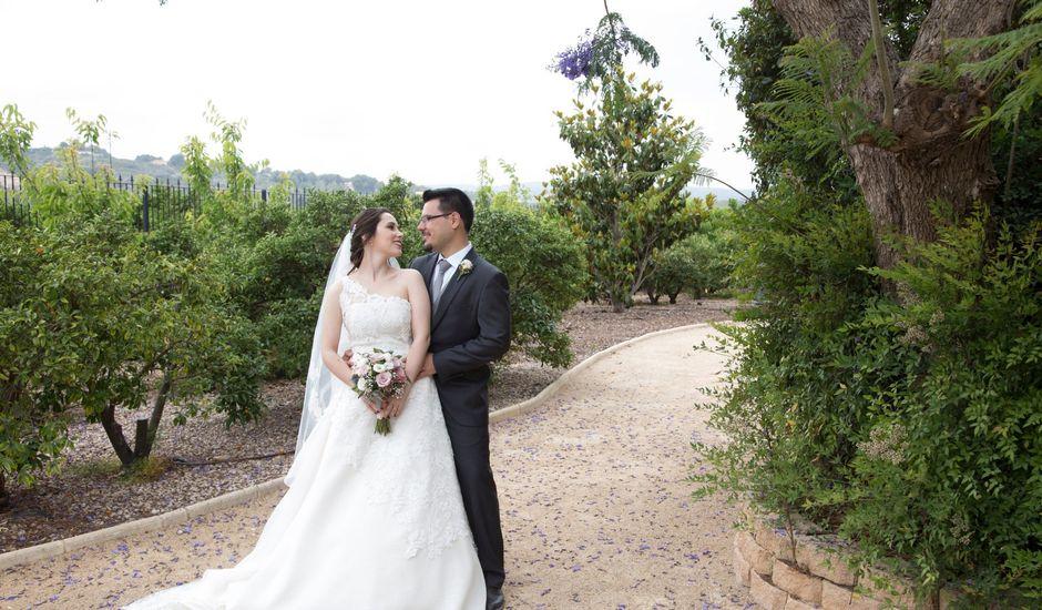 La boda de Sergi y Mª Carmen en Alberic, Valencia