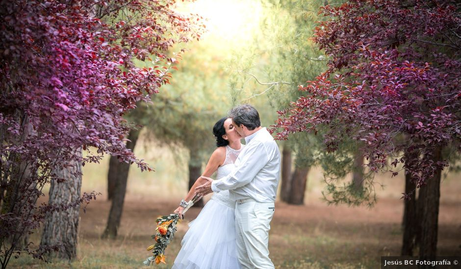 La boda de Javier y Carmen en Requijada, Segovia