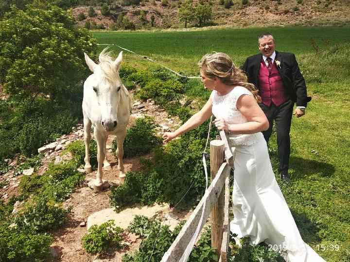 La boda de Montse y Francisco