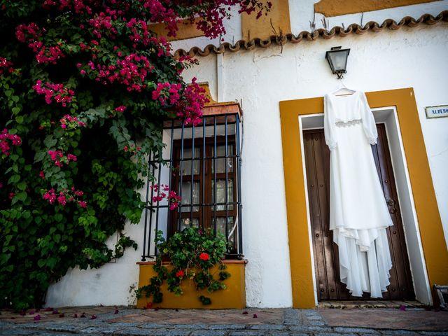 La boda de Castor y Marina en Dos Hermanas, Sevilla 6